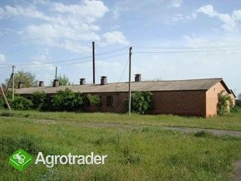 Ukraina.Gospodarstwo rolne, 800ha z zabudowaniami - zdjęcie 1