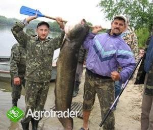 Ukraina.Gospodarstwo rolne,byla ferma trzody.Tanio - zdjęcie 3