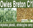 Kwalifikowane nasiona siewne owies Breton C/1