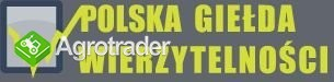 Polska Giełda Wierzytelności - sprzedajdlug.pl