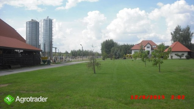 Gospodarstwo - Stadnina Koni - zdjęcie 3