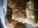 Liście tytoniu VIRGINIA ! DOWÓZ ! 10-18 zł kg
