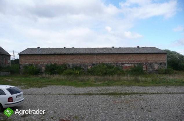 Grunt rolny na sprzedaż 48,92 ha Chłopowo Myślibórz gospodarstwo, rola - zdjęcie 6