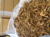 Liscie tytoniu,  STRIPS gotowy blend po fermetacji z Włoch