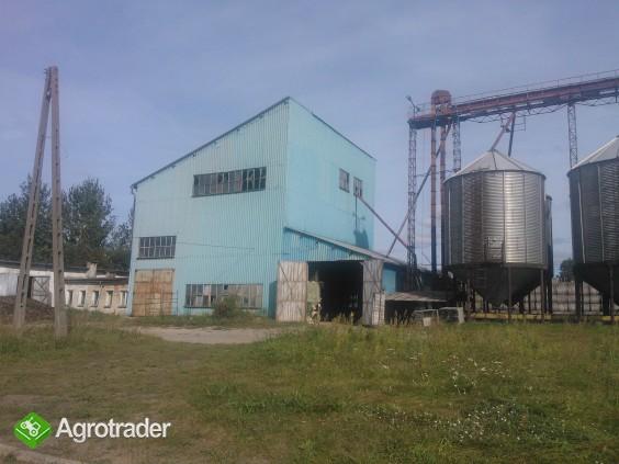 Sprzedam gospodarstwo rolne 87 ha + budynki  zbożowo-hodowlane - zdjęcie 1