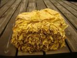 Sprzedam liście tytoniu virginia gold/burley