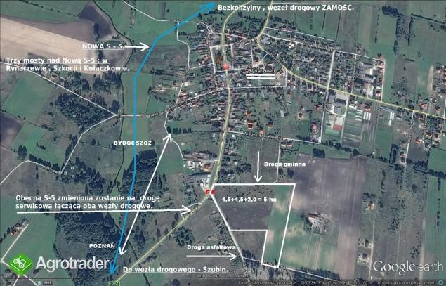 1.5 ha -  uniwersalna działka inwestycyjna k. Bydgoszczy. - zdjęcie 2