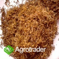 Dobrej jakości tytoń 70zł