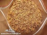 czysty tytoń 70 zł