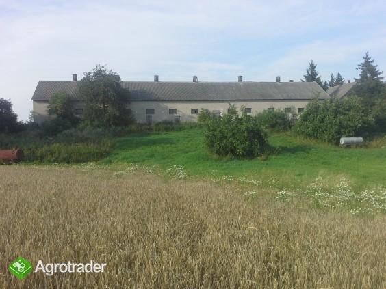 Gospodarstwo rolne na Suwalszczyźnie - zdjęcie 3
