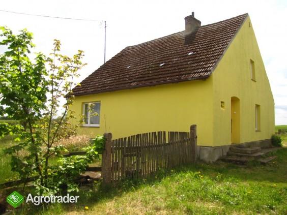 Gospodarstwo Nowe Prusy - cicha przystań, 1.6 ha - zdjęcie 16