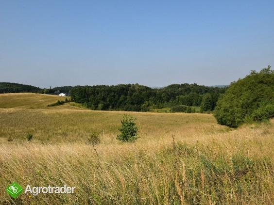 Na Sprzedaż Gospodarstwo Rolne , 507 799 m2 , Szczecin - Czepino  - zdjęcie 7