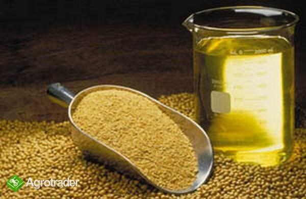 Ukraina. Soja 1,4 zl/kg. Przerob rzepaku, lnu, kukurydzy, slonecznika