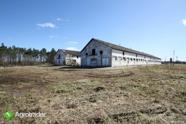 Gospodarstwo Hodowlane Stare Borne, pow. koszaliński - zdjęcie 2