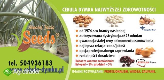 Cebula Dymka 24 odmiany gwarantowana jakość i fachowa obsługa - zdjęcie 2