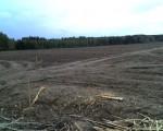 Sprzedam ziemia ponad 200 ha