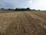 Grunty rolne na Pojezierzu Drawskim