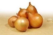 Sprzedam cebule